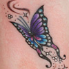 Butterfly touch up