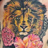 Lion with flowers, boxing gloves and more